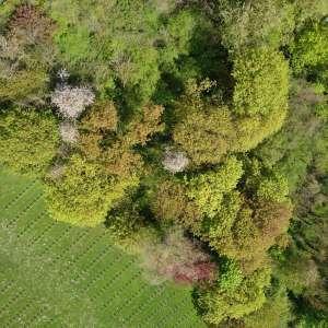 Drone scan laser scan3D photogrammetrie geometre topographe